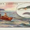 Conger fishing at Deal.
