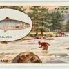 Salmon fishing on the Dee.