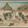 Eskimo puppies.