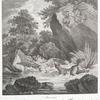 Anno 1736. Ist dise Wilde Gans von einem im geröricht laurenden Fuchsen auf einem altwasser bey Reichenweiler in der Graffschafft Mümpelgard lebendig gefangen, der Fuchs verfolget und von einem Hochfürste Würtenbergischen Jäger zum Schuss gebracht worden.