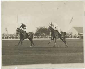 [Two polo players during a match.]