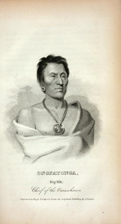Ongpatonga (Big Elk) Chief of the Omawhaws.