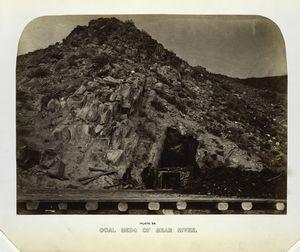 Coal beds of Bear River.