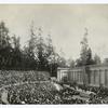 Greek Theatre, University of California, Berkeley.