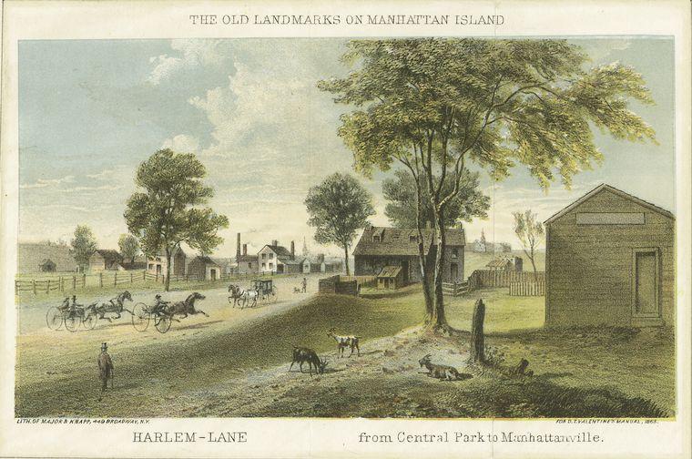 Harlem-Lane from Central Park to Manhattanville , 1828