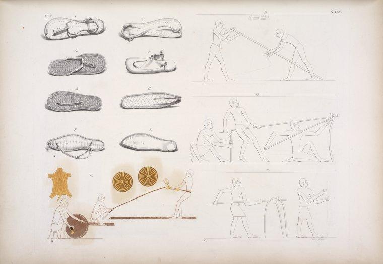 Fascinating Historical Picture of Museo egizio di Firenze in 1832