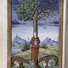 Final miniature of an allegory of a woman as part of the tree trunk, whose branches sprout acorns and berries, while two wolves, each with a child, stand at the foot of the tree.