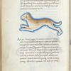 Miniature of a dog, with text and 1-line blue initials