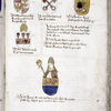 Coats of arms with commentary, f. 359
