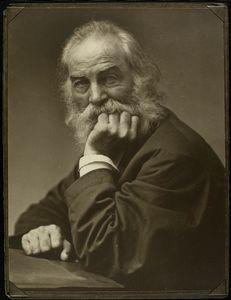 [Portrait of Walt Whitman, around 1870.]