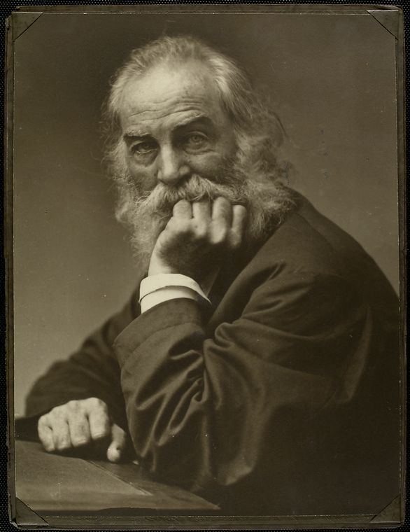 [Portrait of Walt Whitman, around 1870.]