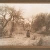 Apache women passing oak row.
