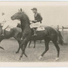 Vaals. Trainer F. Williams.