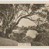 Mitchell River, Bairnsdale, Victoria.