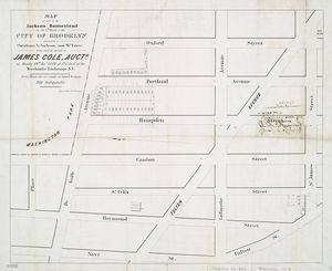 Map of part of the Jackson Homestead in the 7th ward of the city of Brooklyn : belonging to Christiana A. Jackson (now Mrs. Peters) to be sold at auction by James Cole, auctr., on Monday 19th Novr. 1849 at 12 o'clock at the Merchants' Exchange, N.Y.