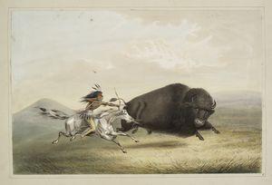 Buffalo hunt, chase. Digital ID: 466211. New York Public Library
