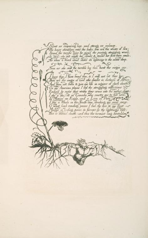 in 1793