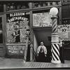Blossom Restaurant, 103 Bowery, Manhattan