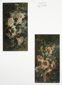 [Prints depicting flowers and plants.]