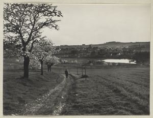 [View of Humpolec suburb.]