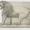 Colossal lion, Great Entrance (Nimroud) [Nimrud].