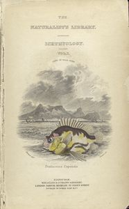 natural history of fishes of the perch family.