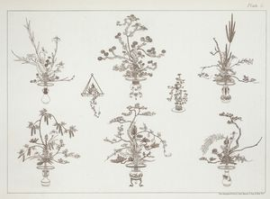 [Few outline drawings of the ceremonial bouquets.]