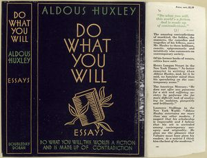 Do what you will : essays.