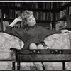 Who's afraid of Virginia Woolf? [1962], original cast.