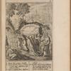 Virginis matris sepvltvra, opp. p. 544