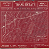 Auction Sale to settle the Trask Estate. 600 Bronx Lots.