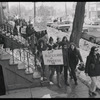 Albany demonstration contact sheet 3 frame 4
