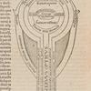Nervus opticus, [Book 1, page 6]