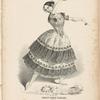 El jaleo de Jeres as danced by Madlle Fanny Elssler