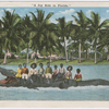 """A Joy Ride in Florida"" - postcard mailed to Frederick Hoeing, 1917"