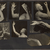 Eight photographs of Ted Shawn's arms and hands