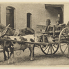 [Reproduction of photograph of SLC in cart drawn by horse and ox, with driver and boy].