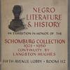 Negro Literature & History