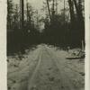 [Frozen road Falanga No. 7.]