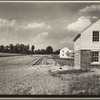 Homes and land cultivation. Arthurdale project. Reedsville, West Virginia
