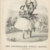 celebrated polka dances. [Lithograph] Endicott's Lithy.