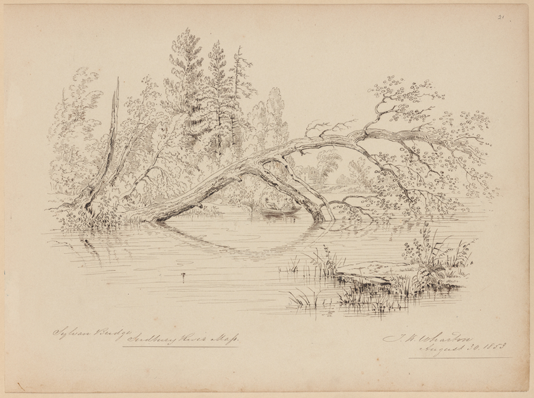 Fascinating Historical Picture of Thomas Kelah Wharton on 8/30/1853
