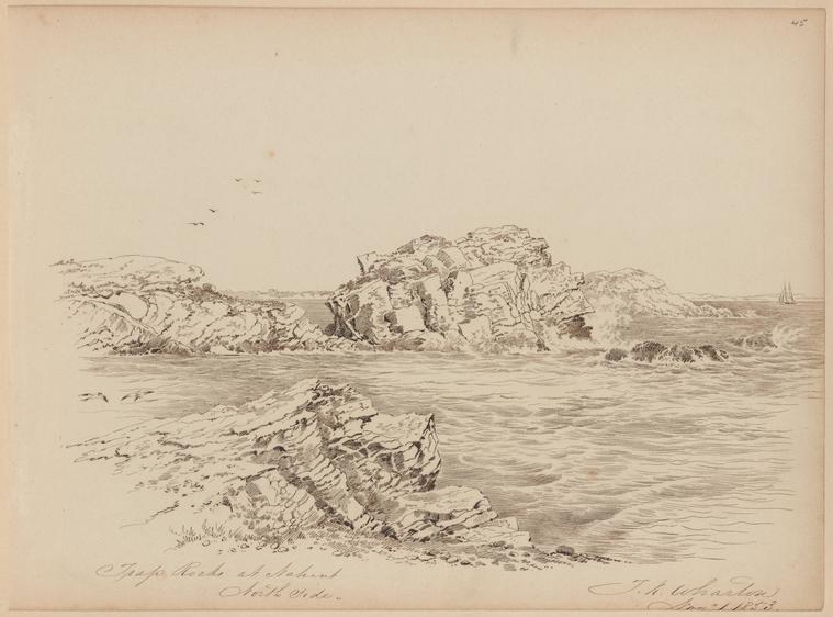 on 11/1/1853