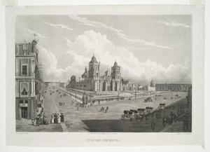 Vue de Mexico. Digital ID: 54727. New York Public Library