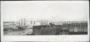 View of New Orleans, taken from the lower cotton press.
