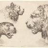 Deux têtes de lion, dont une grande et une petite, et une petite tête de tigre
