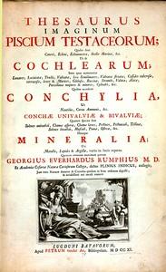 Thesaurus imaginum piscium testaceorum; quales sunt cancri, echini, echinometra, stellae marinae, &c. ut et cochlearum ... quibus accedunt conchylia, ut nautilus, cornu Ammonis, & conchae univalviae et bivalviae ... denique mineralia ...