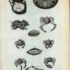 1. Cancer Ruber; 2. Cancer Barbatus; 3. Pediculus Marinus; 4. Limax Marina; 5. Limax Marina tertia; Limax Marina altera; A. Cancellus Anatum primus; B. Cancellus Anatum secundus; C. Cancellus Anatum tertius; D. Cancellum Anatum quartus; E. Cancer vocans.