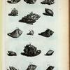 Cassides Verrucosæ: A. Verrucosa prima, sive Ceramica; B. Verrucosa secunda; C. Verrucosa tertia; D. (D. Belg.) Wijd-mondige Pimpeltje; E. (Belg.) Kleyne Geel-mond, of bruyme Pimpeltje en kleyne getakte Moerbey; F. (Belg.) Haayrige Oor, of Oor-lies en Oorhoorn; G. (Mal.) Bia Cadoe; H. Ranula; I. (Belg.) Knoddeke; Fig. 1. Braccæ Helvetiorum;Fig. 2. (Belg.) Dubbelde getakte schilpadstaart, of bedde-teyk; Fig. 3. (Belg.) Gladde Bedde-teyk; Fig. 4. (Belg.) Getakte bastaart zoort van Bedde-teyk; Fig. 5. et 6. (Belg.) Geknobbelde Schipad-staart.
