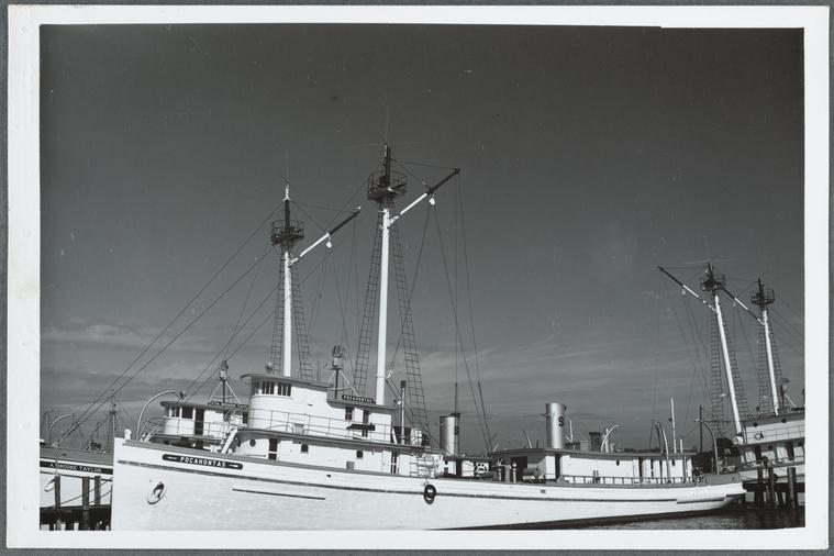 on 6/5/1955